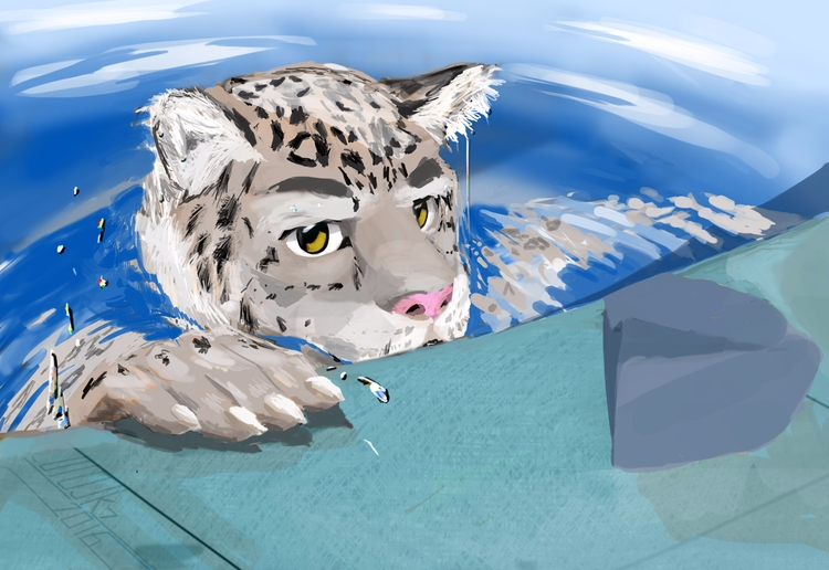 snow leopard swim. Drawn 2016-0 - uiojk7 | ello