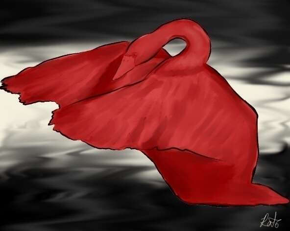 red swan - drawing, digitalart, illustration - woahdog | ello