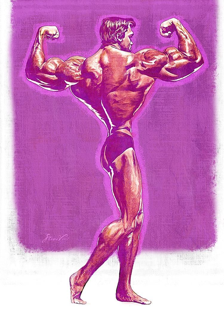 Arnie. impressive personality l - stevevdh | ello