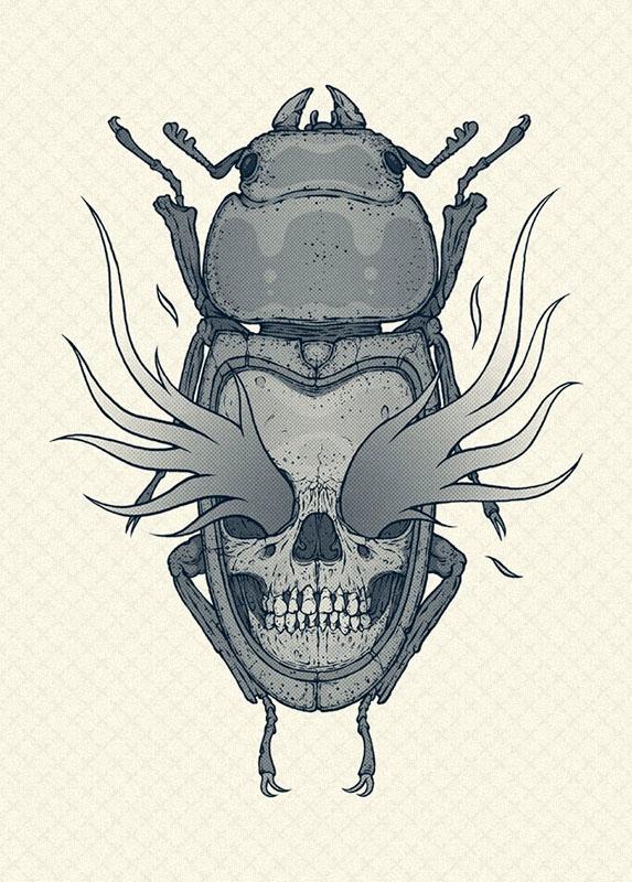 bug skull - ate, illustration, art - esze_ate | ello