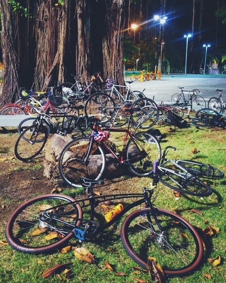 cycling, bikescene, budnitz, biking - danielgafanhoto | ello