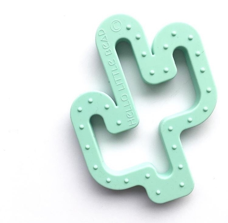 !! quickly selling mint Cactus  - hellolittlebead | ello