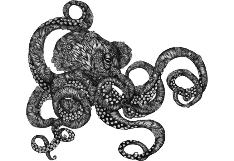 Barnacle Octopus. Ballpoint Pen - ecmazurart   ello