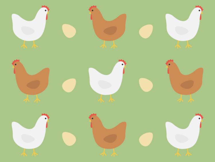 illustration, chicken, egg - tend | ello