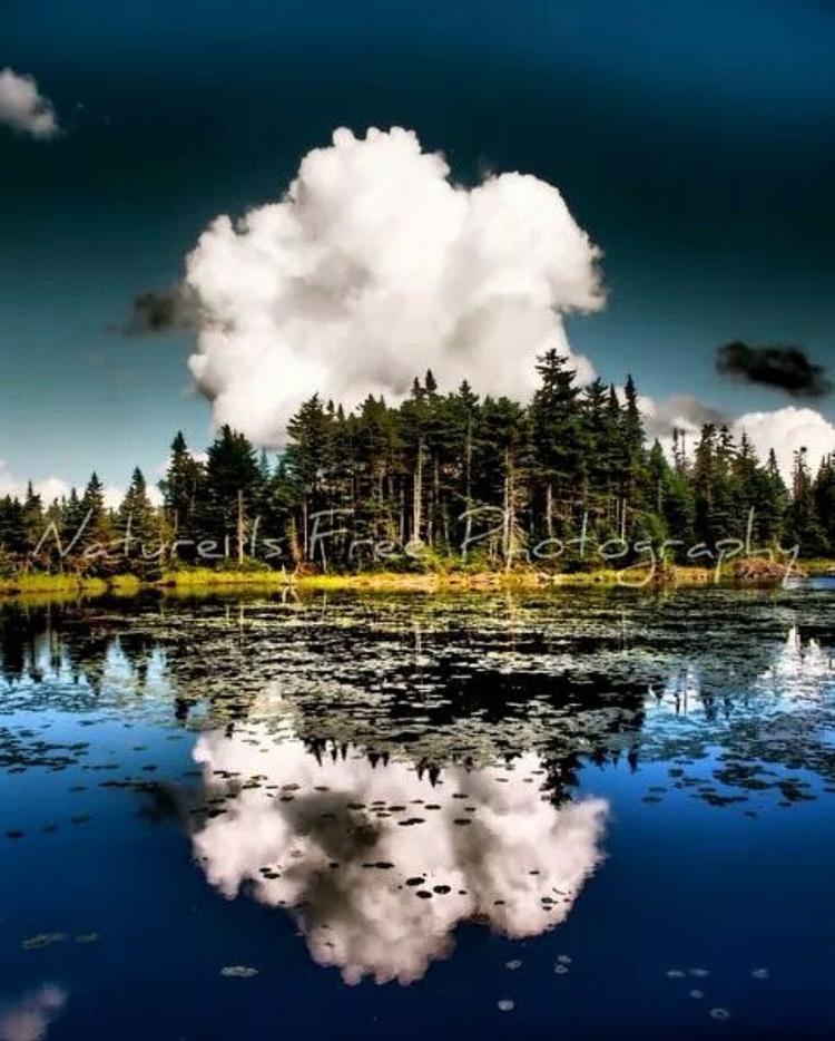 remember lovely lakes, recall f - natureisfree | ello