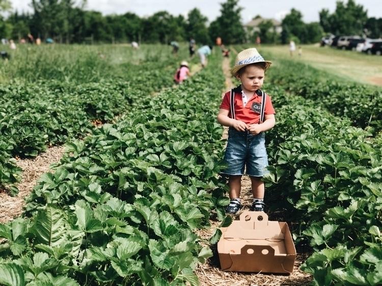 garden childhood. enchanted pla - casskelle | ello