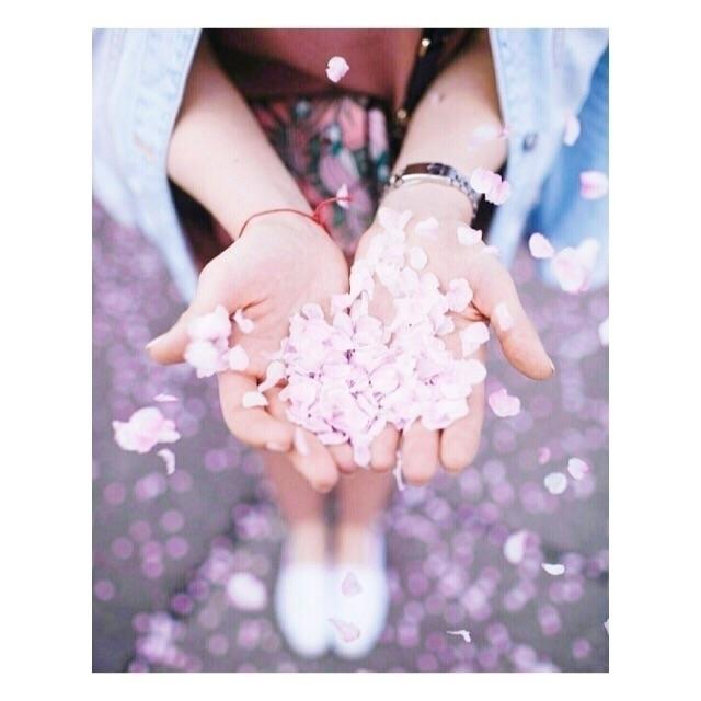endless pink flowers act confet - berrynadine | ello