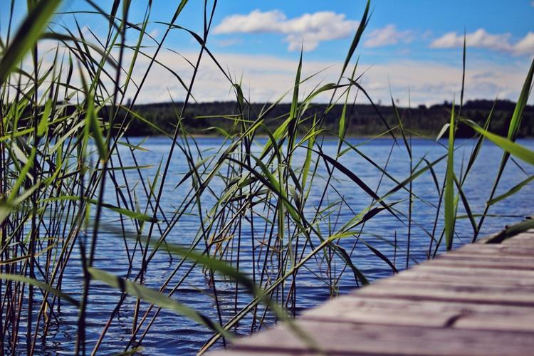 Finland, Suomi100, lake - mentira0 | ello