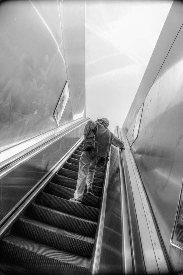 'vertigo Brussels - summer 2017 - studio_zamenhof   ello