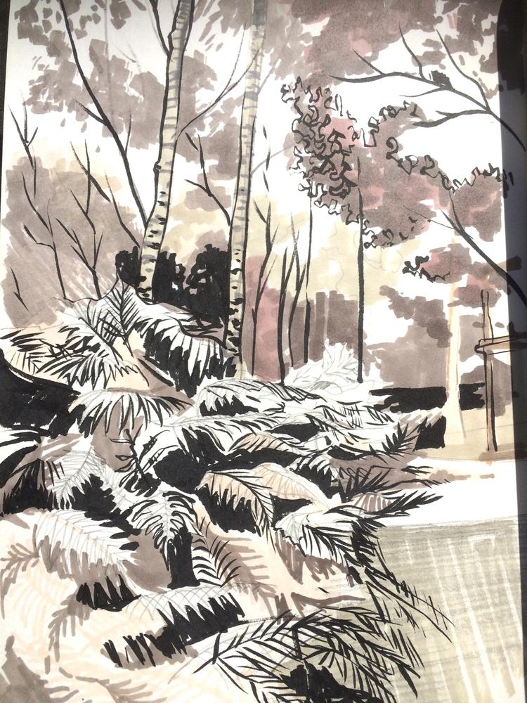 Ferns. Forest - alexgreendraws | ello