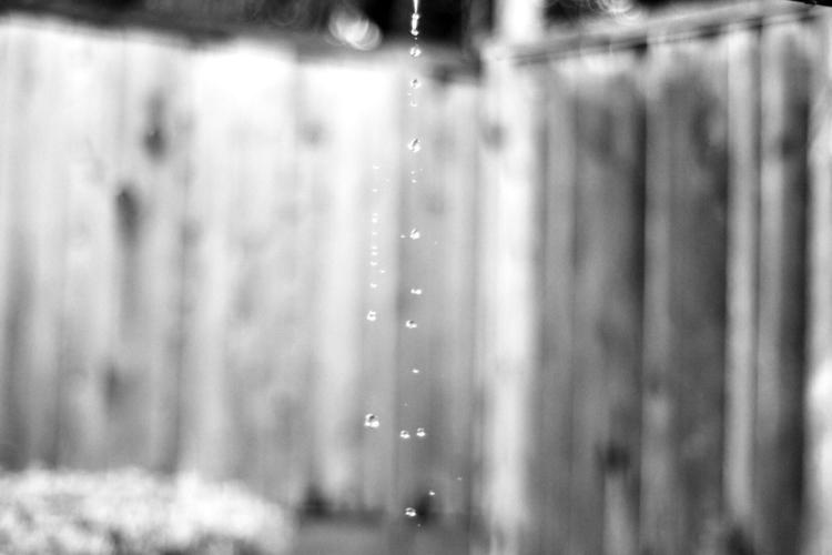 Freeze - blackandwhite, 50mm, 35mm - giovonni | ello
