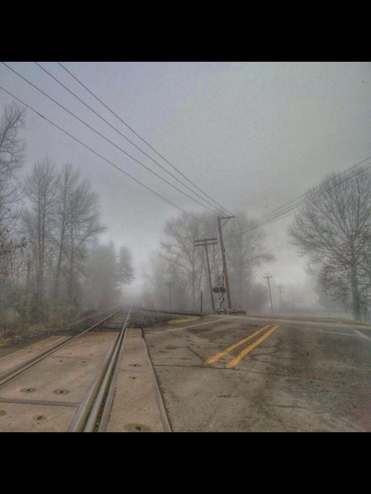 Fork Trail - Eugene, EugeneOregon - aaronkampfer | ello