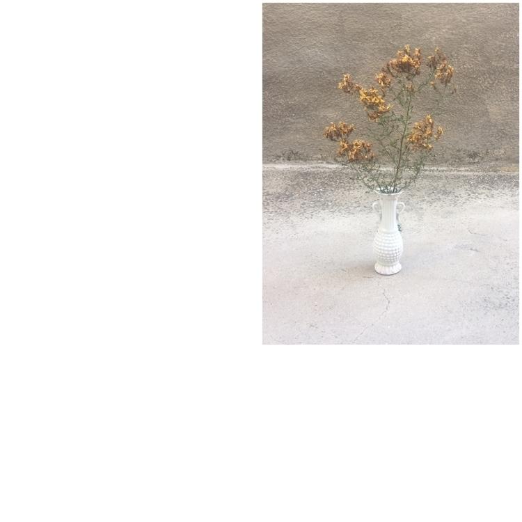 Las flores crecen mejor con la  - annitaklimt | ello