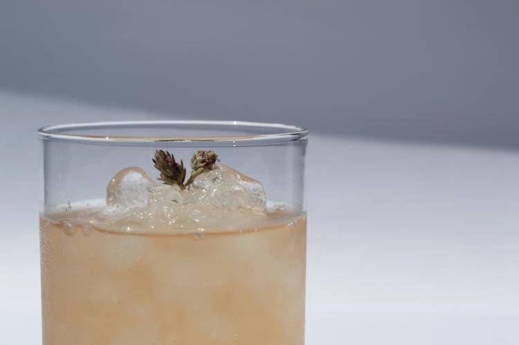 Chilled rhoeco herbal tea infus - rhoeco_fineorganicgoods | ello