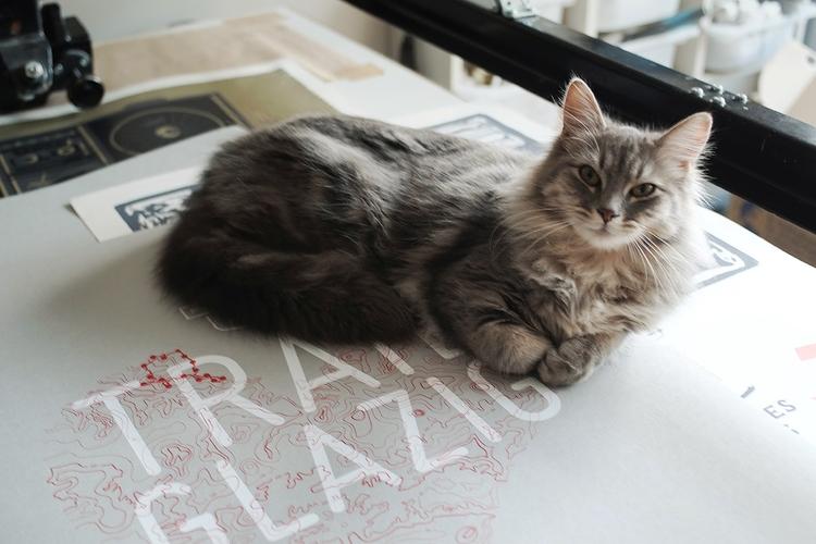 cat screenprint table Dezzig wo - dezzig | ello