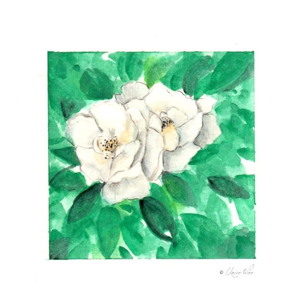 Study - flowers, study, painting - j0eyg1rl | ello