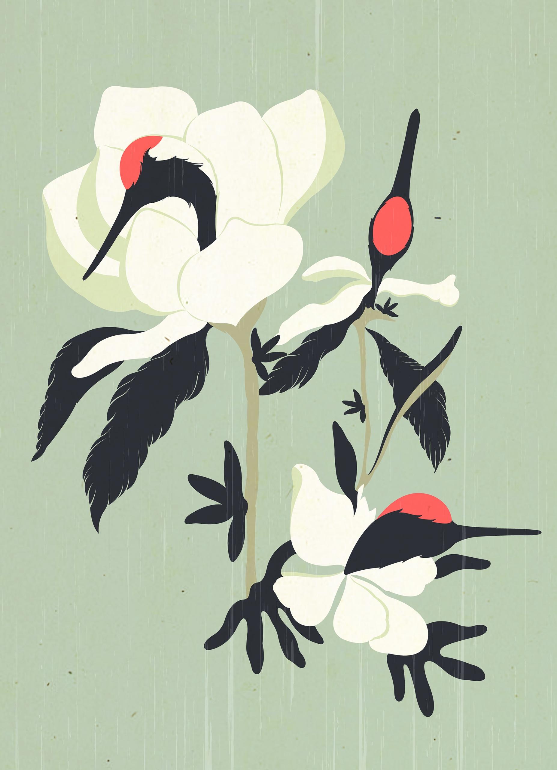 Crane Flower - kzengjiang, DigitalDecadeCyberia - kzengjiang   ello