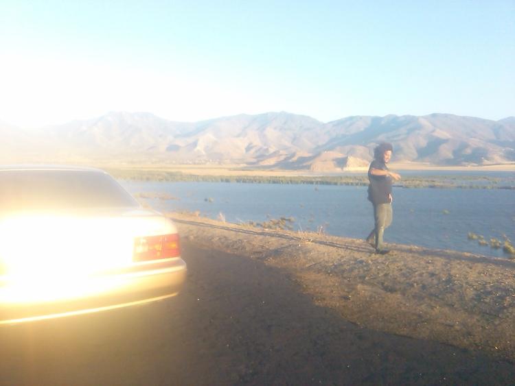lexus, california, lake, landscaping - alexandria3 | ello