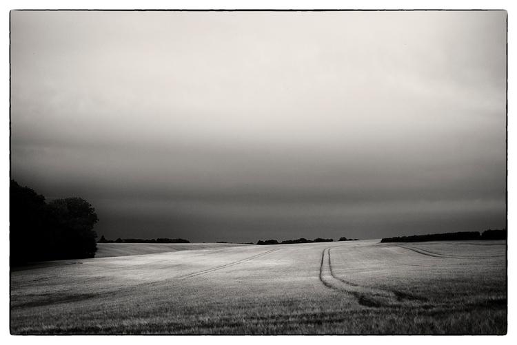 Evening Light (Landscape Series - sselvejer | ello