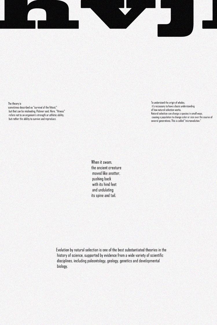 theory evolution - typography, design - emmanuelachusim   ello