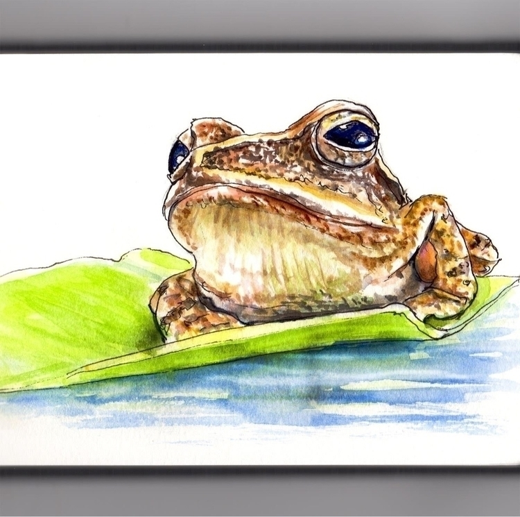 - Day 12 Frog Sunset - WorldWatercolorMonth - doodlewash | ello
