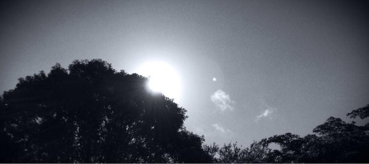 Warm Morning Sun Apps - mikefl99 - mikefl99   ello