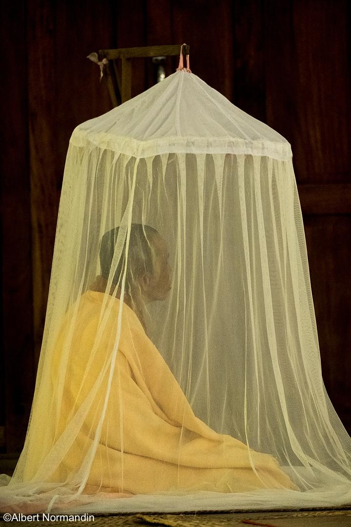 Silent Meditation Nuns - Myanma - albertnormandin | ello