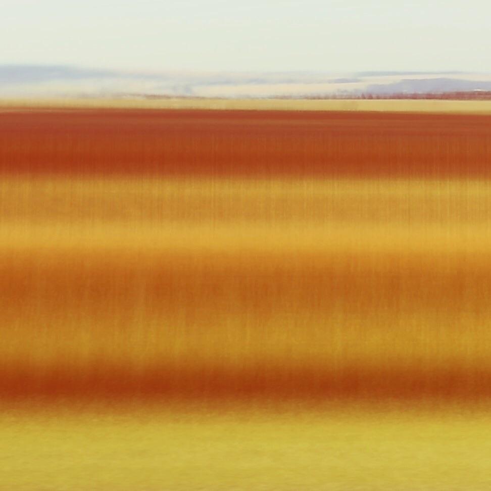 Winter Wonderland (grasslands s - lioneldp | ello