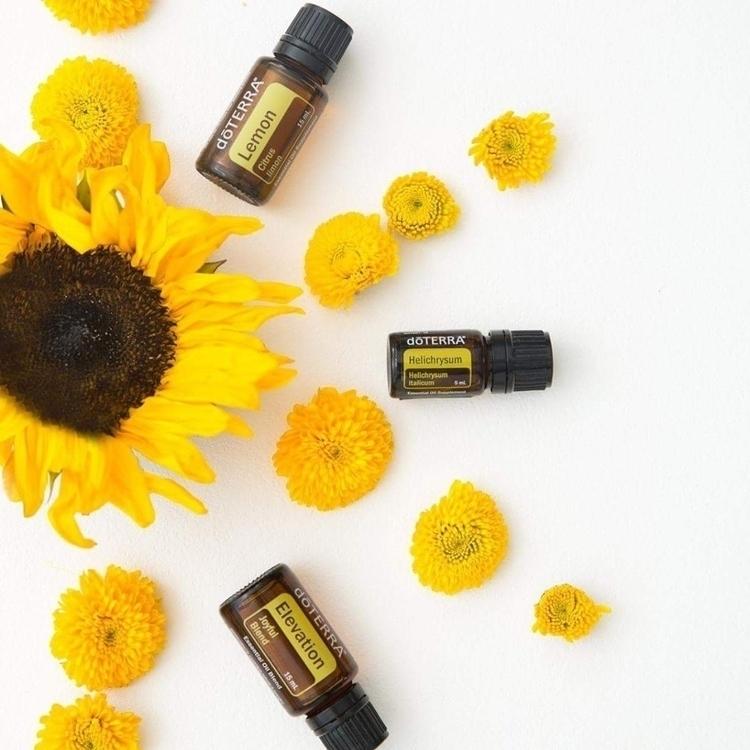 color yellow represents sunshin - mum-wife-oils | ello