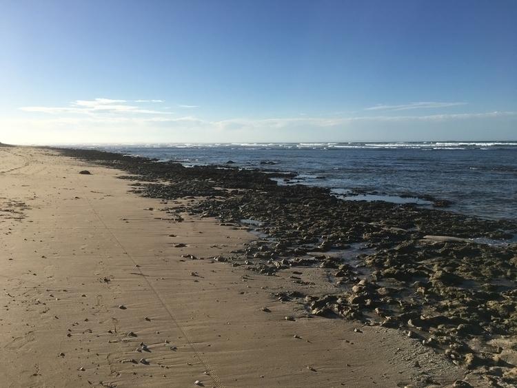 Beautiful beaches Port Elizabet - ahoskins | ello