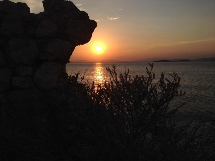 Lion sunset - ekomateas | ello