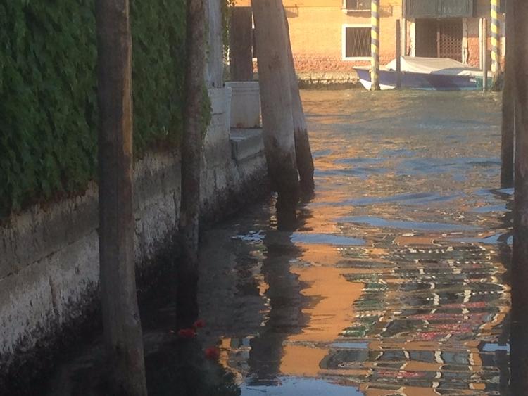 Venice June - ecojes | ello