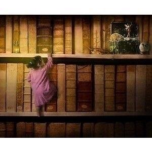books, bookshelves - milanostphn | ello