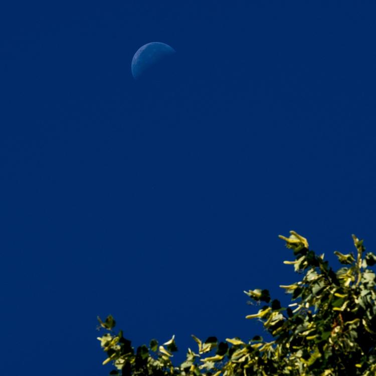 blue morning moon - Munich - christofkessemeier | ello