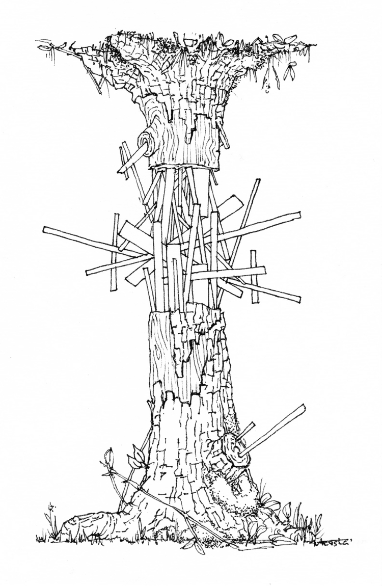 - Loan   wooden house tree hair - ricardo_acosta   ello