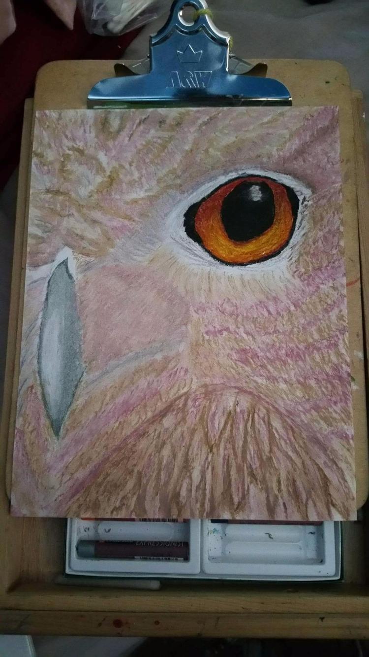 Bird prey oil pastel drawing - totallytwistedfickity | ello