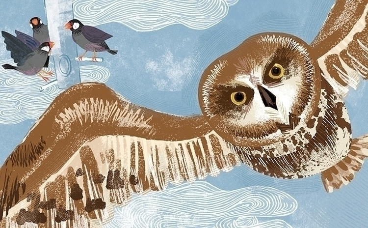 java sparrows socialize lone Pu - saltyjingjing | ello
