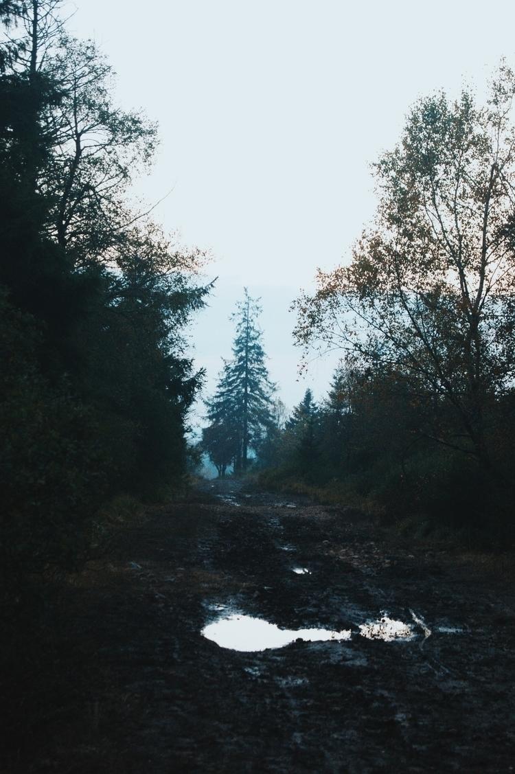 Ello - vsco, vscocam, nature - k_ng_ | ello