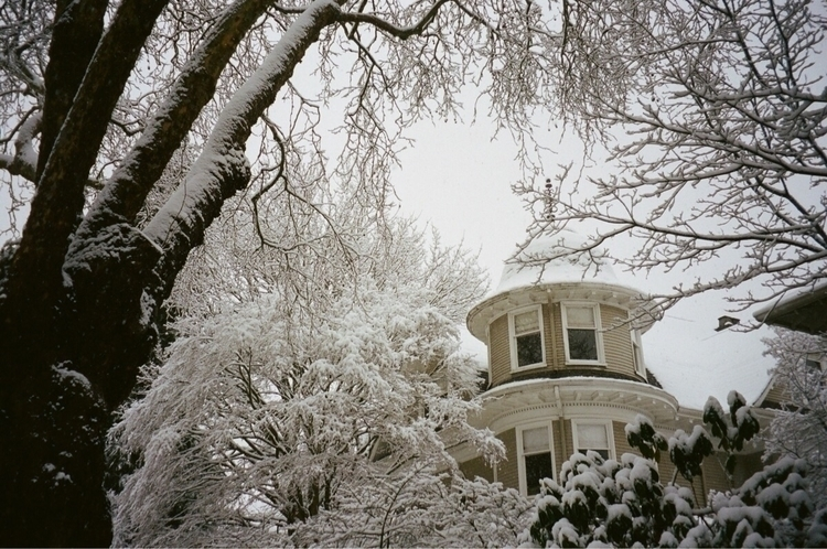 Snow Day Seattle, WA 35mm - photography - abigail_swanson | ello