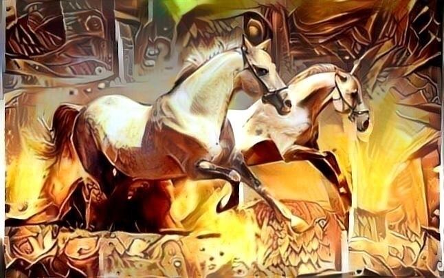 love stampede wild horses. hors - castellani   ello