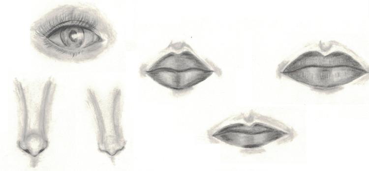 attempt drawing semi-realistic  - whiteoleander | ello