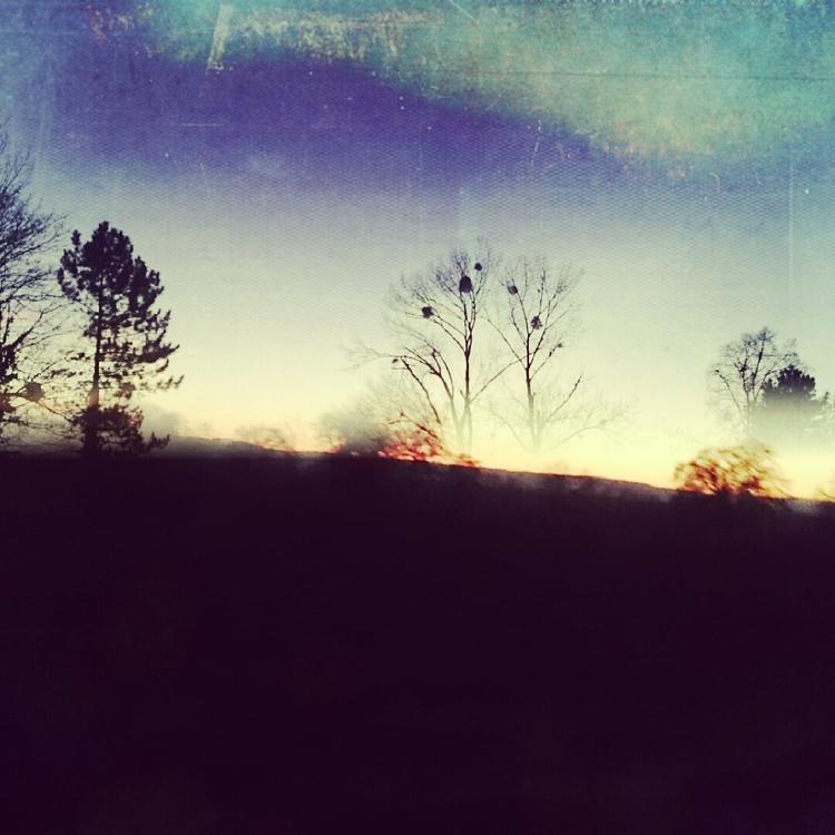 autumn, mist, morning, sunrise - blueeye   ello