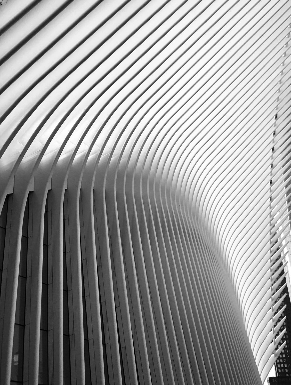 Sharp shows beautifully high - architecture - jamesanok | ello