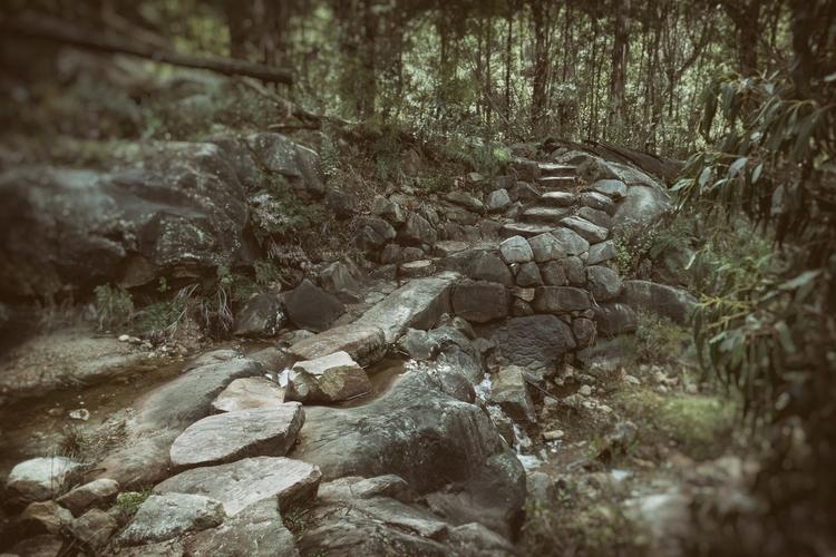 Leading Crossing stream leading - garylight | ello