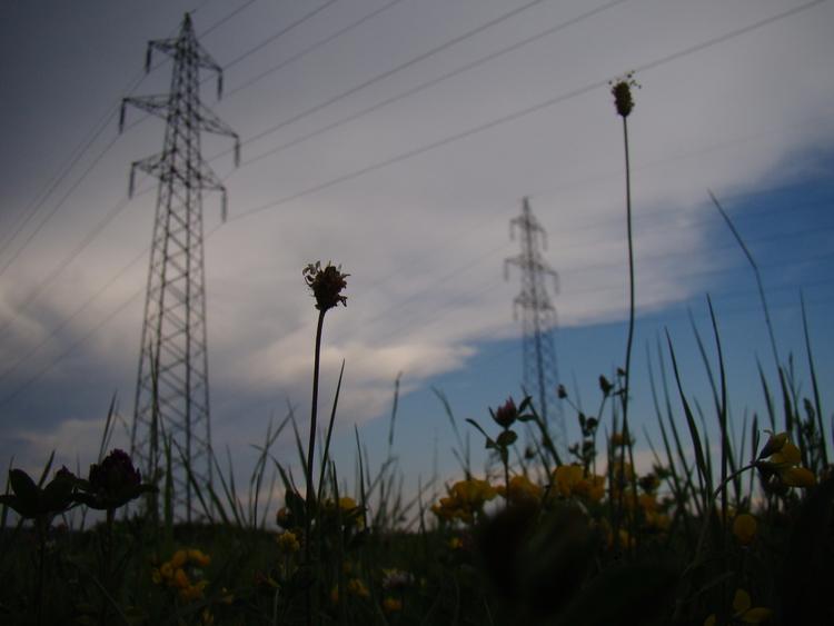 elektrika trnj - trnjearth | ello