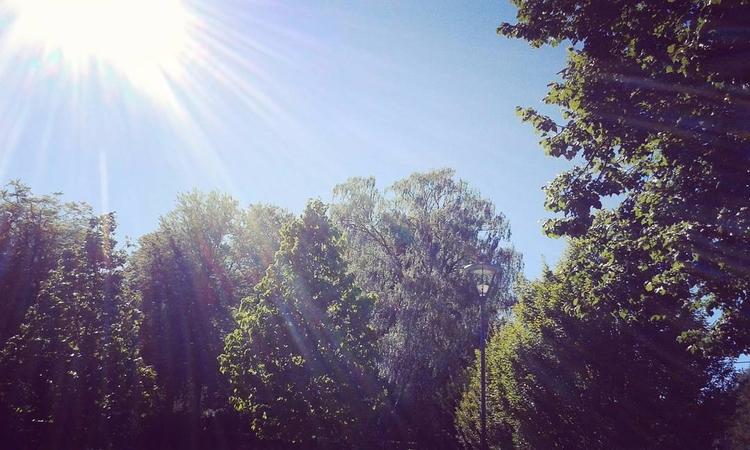 Vackert designade lyktor på Sko - skogskyrkogardar | ello