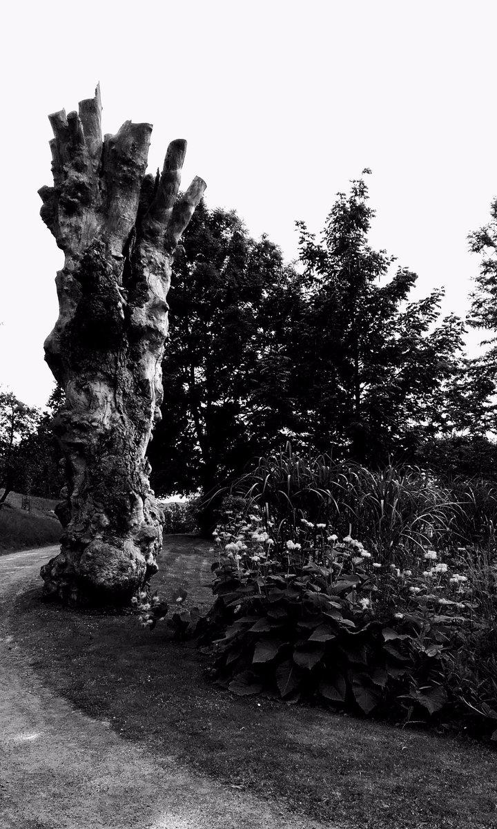 af Mellyrn.se - Tree - mellyrn | ello