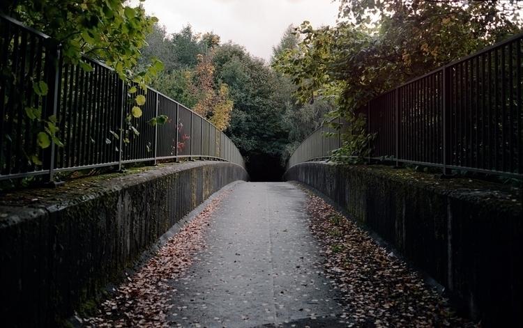 Bridge - 35mm, film, photography - samnap | ello