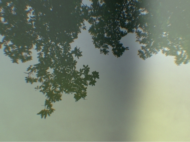 Sun Beaming Sky Apps - mikefl99 - mikefl99 | ello