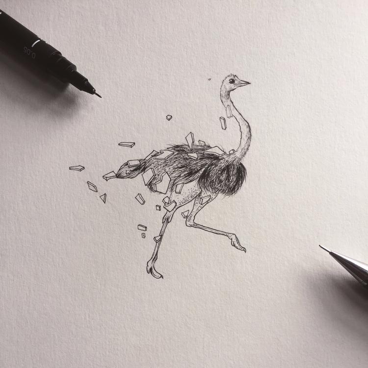 Escape | Ostrich Fineliners pap - luongdoo | ello